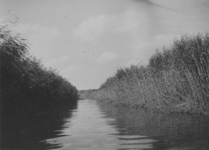 piershil-oorlog-inundatie-03