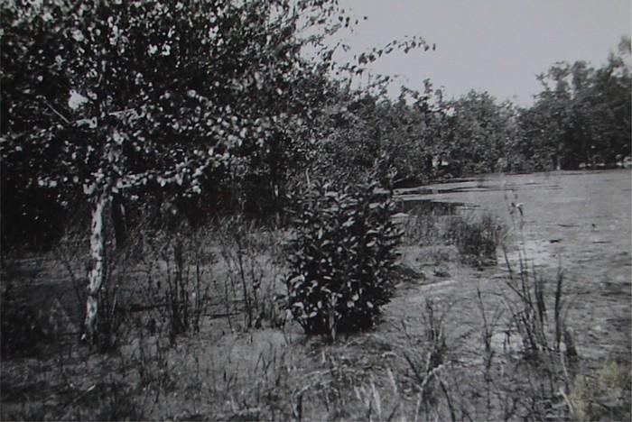 piershil-oorlog-inundatie-benedenmolendijk-06