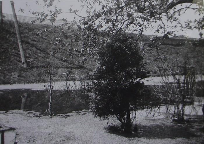 piershil-oorlog-inundatie-benedenmolendijk-07