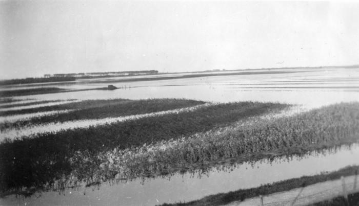 piershil-oorlog-inundatie-kleinpiershil-05