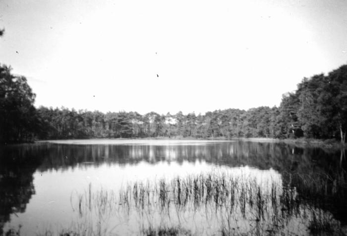 piershil-oorlog-inundatie-oudpiershil-02