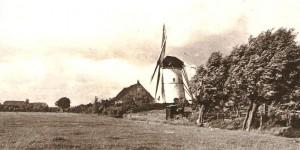 molen-westmaas