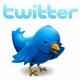 twitter-mini